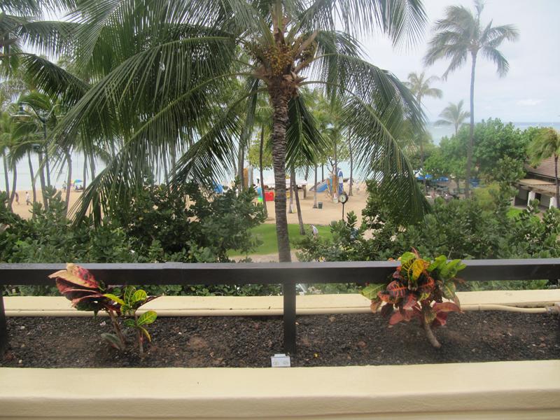 Our Personal Hyatt Regency Waikiki Beach Resort And Spa Photos